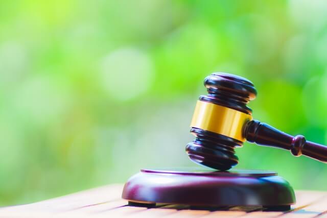 ハクビシン駆除は法律で禁止されている?