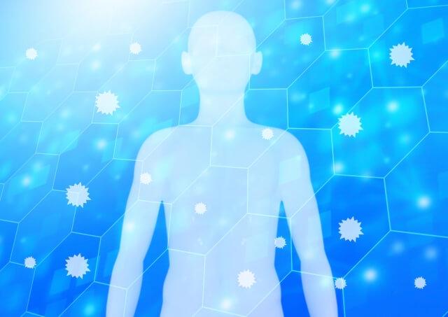 アライグマによる病気や感染症など健康被害の危険性や症状