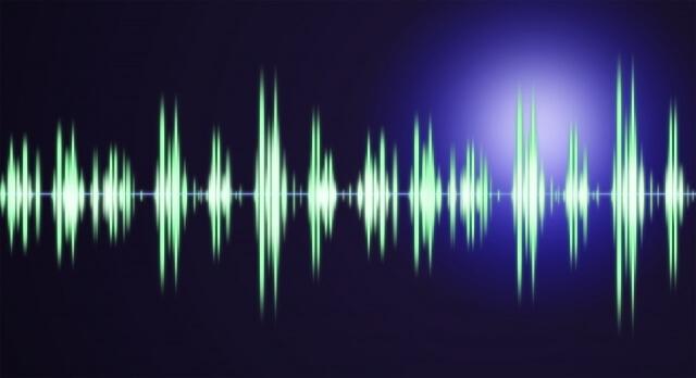 コウモリの撃退に超音波はおすすめできる?効果や周波数の仕組みを解説!