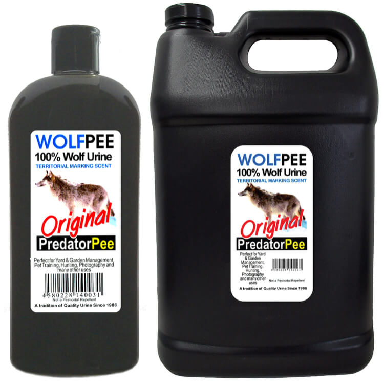 天敵のオオカミの尿(ウルフピー)