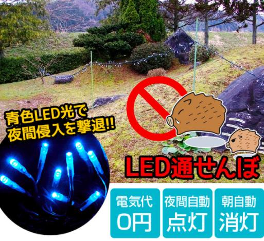 LED通せんぼ