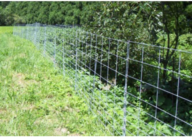 ワイヤーメッシュの柵や電気柵での侵入防止