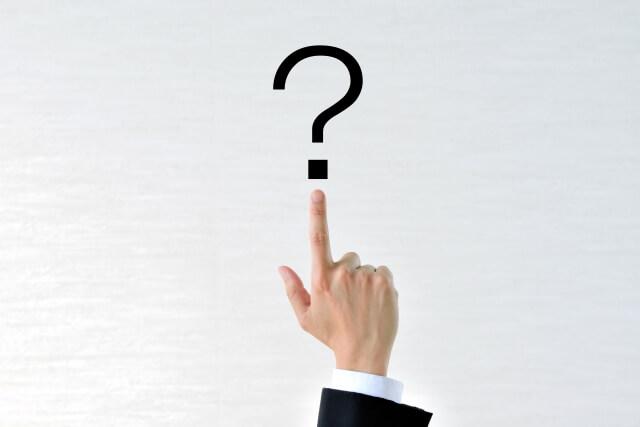 タヌキとアライグマは何科に分類されるの?