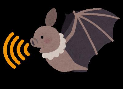 コウモリ対策にオススメのライト