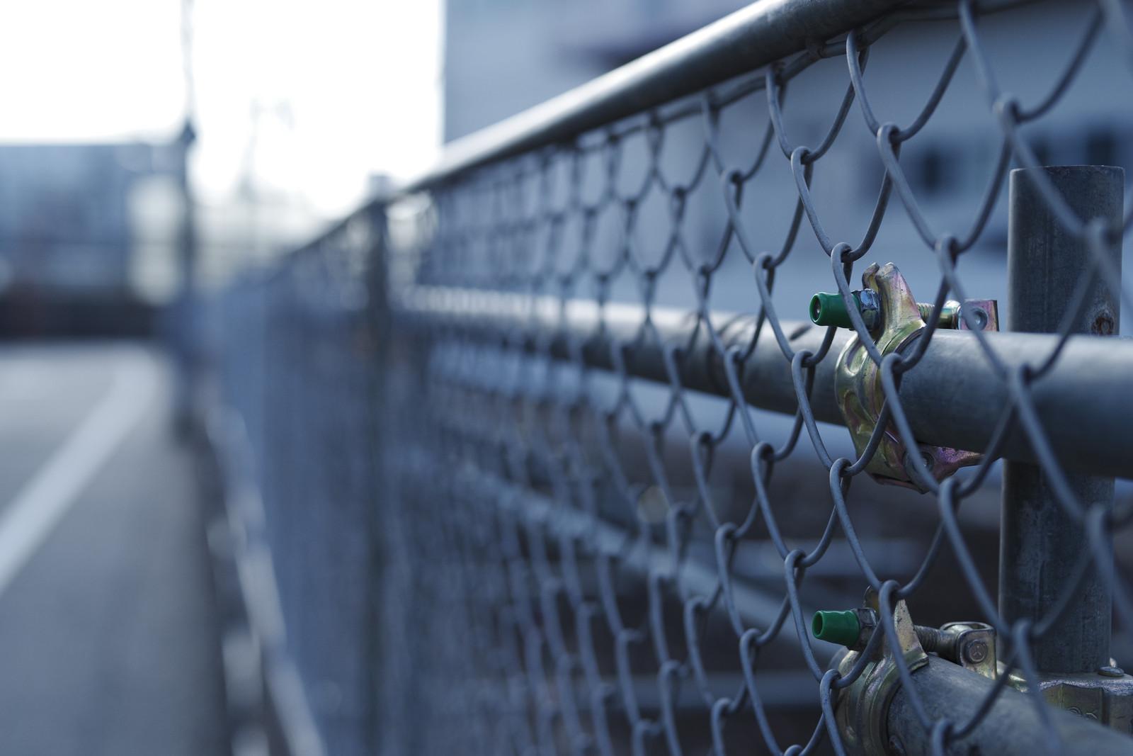 電気柵やワイヤーメッシュ柵で侵入防止もすると効果アップ