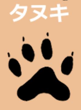 タヌキの足跡は4本足