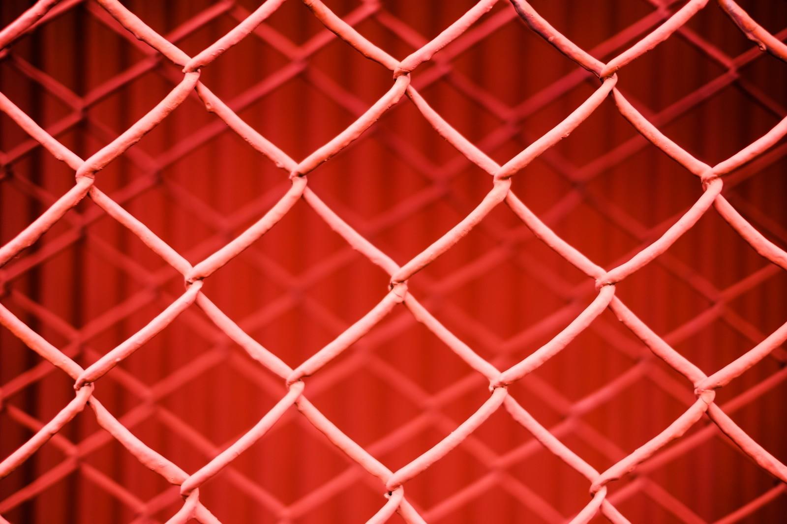 コウモリの侵入経路を金網やネットなどで塞ぐ