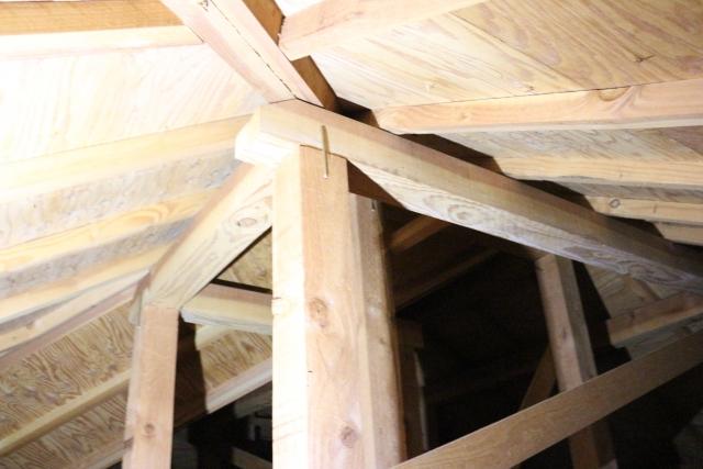 【タヌキによる被害③】天井裏の損害などの家屋へのダメージ